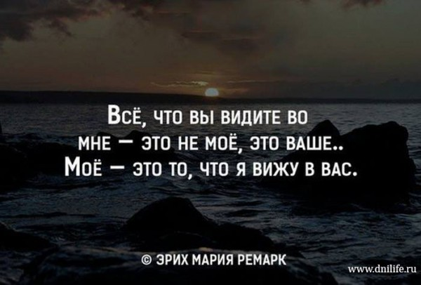 11141273_844000032360201_3932353349534865201_n (1)