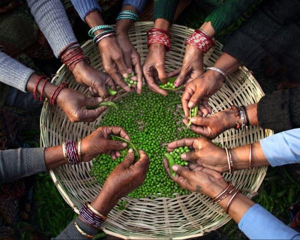 Вместе веселее, Индия