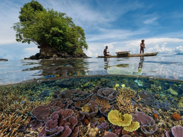 Кристально чистая вода у берегов Папуа