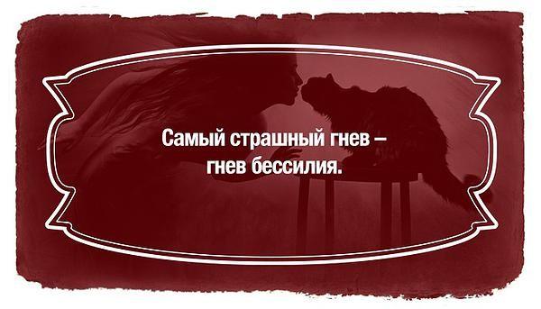 c8217b_d7e40cf18dfc43edbf8959555ef97b7f.jpg_srz_p_600_343_75_22_0.50_1.20_0.00_jpg_srz