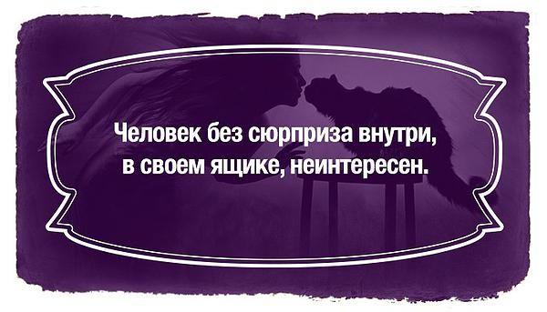 c8217b_edc95225a2fe4f638a21e839f40065ab.jpg_srz_p_600_343_75_22_0.50_1.20_0.00_jpg_srz